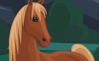 Paarden Spelletjes