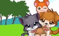 Giochi di Animali