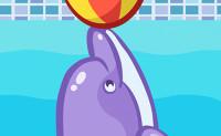 Dolfijn Spelletjes