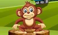 Apen Spelletjes