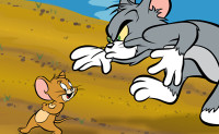 Tom & Jerry Spelletjes