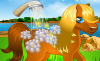 Pony Cleaning