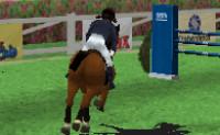 Paard Rijden