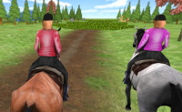 Paarden Springen 4
